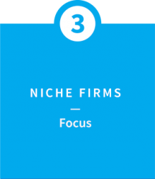 Niche Firms